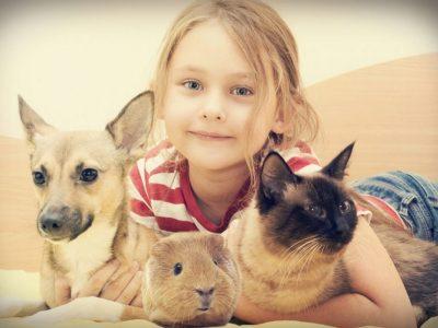 elysium - Tierverhalten verstehen - Was tue ich, wenn das Haustier meines Kindes stirbt?