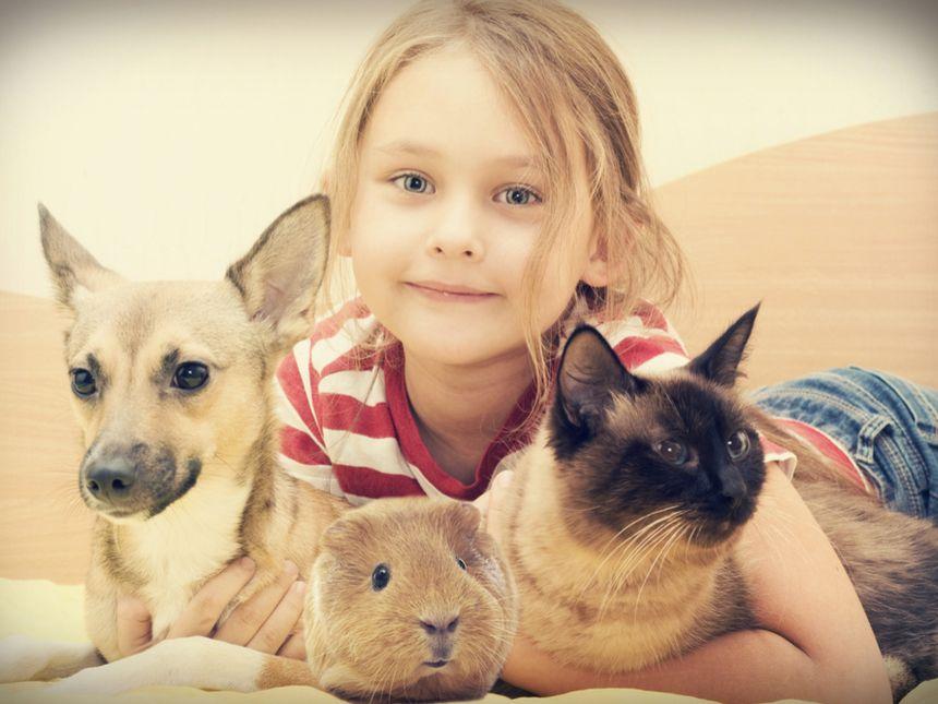 Was tue ich, wenn das Haustier meines Kindes stirbt?